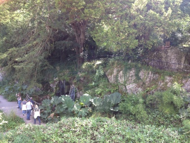 Blarney Castle Gardens.